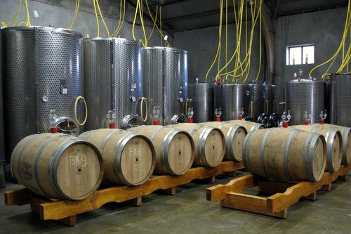 de_wijnen_wijngoed_de_hennepe