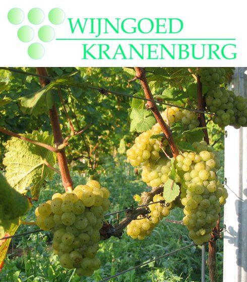 Wijngoed Kranenburg