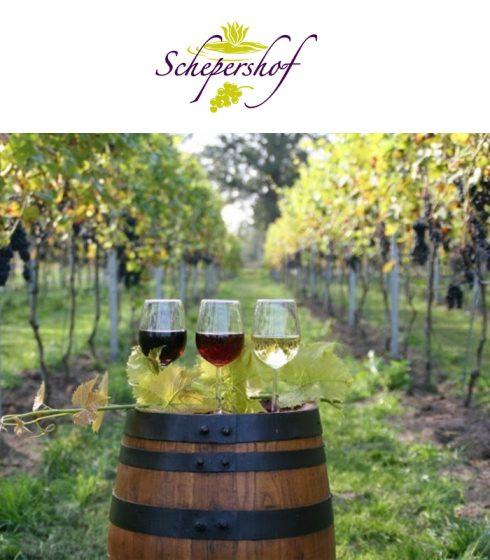 Wijngaard Schepershof