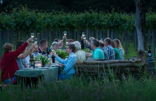 Achterhoekse wijnen bekroond met prijzen